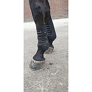 Harrys Horse Protèges-Tendons Elite-R Rose Full
