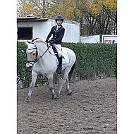 Harrys Horse Tapis de Selle Polyvalent Next Marine/crème Full CP