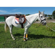 Harrys Horse Guêtres Country Orange/Rouge/Blanc/Bleu XL