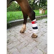 Harrys Horse Guêtres Country Rouge/blanc/bleu S
