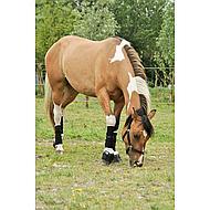 Harrys Horse Springschoenen Rubber Vestan Zwart M