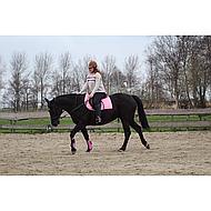 Harrys Horse Gamaschen Rosa Full