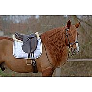Harrys Horse Dressuursingel Neopreen Glad Zwart 70cm