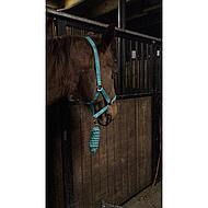 Harrys Horse Ensemble Licol Initial Turquoise Poney