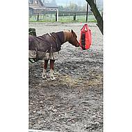 Harrys Horse Sac à Foin avec Gaze Insert Orange