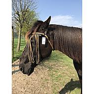 Horka Vliegenfrondeel Bruin Pony