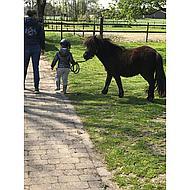 Covalliero Bombe d'Équitation Beauty Enfants Noir 53-57