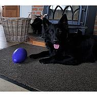 Jolly Egg Purple 30cm 1 st