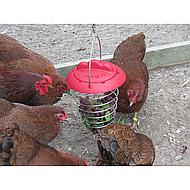 Agradi Poultry Vegetable Holder Feathers & Beaky 1st