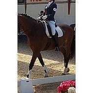 Harrys Horse Veste d'Équitation St. Tropez II Marine/Blanc XS