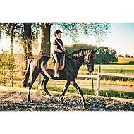 Harrys Horse Rijlaarzen Elite Cognac Wijd 40