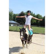 Harrys Horse Bombe C.A.P. Noir XL