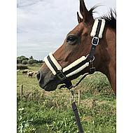 Harrys Horse Ensemble Licol Soft Noir full