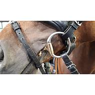 Harrys Horse Eggbutt Anatomic French Mouth O-link 14,5cm