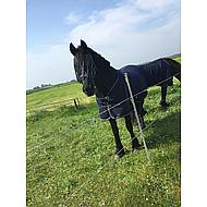 Harrys Horse Sommerdecke Honeycomb Navy 145cm