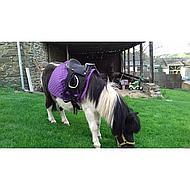 Harrys Horse Zadel Bambino Zwart