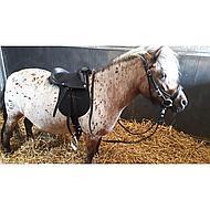 Harrys Horse Sattel Bambino Schwarz