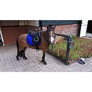 Harrys Horse Zadel Bambino Rose