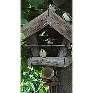 Esschert Pindakaas voor Tuinvogels