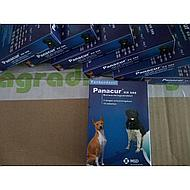 Panacur KH 500mg Hund 10 Tabletten