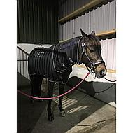 Horseware Sportzvibe Decke Pferd Small