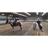 HKM Longeersingel met Handvat Donkerblauw/Beige Pony