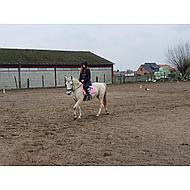 HKM Zadeldek Cassandra Groen Pony Dressuur