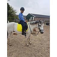 HKM Saddle Cloth Cassandra Softice Pink/Silver Pony Dr