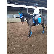 BR Strijklappen Event Pu Neopreen Voering Princess Blue Pony