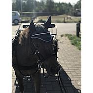 Horka Frondeel Siliconen Paars Pony