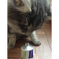 Virbac Nutri-plus Cat Kat 70,9gr