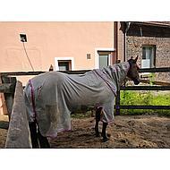 Amigo by Horseware Bug Buster Vamoose Silver 130/183