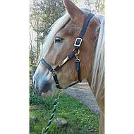 Amigo by Horseware Leather Headcollar Black Pony