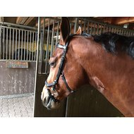 Rambo Micklem Competition Bridle Black Full