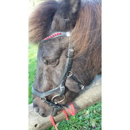 Rambo Micklem Competition Bridle Black Extra Full