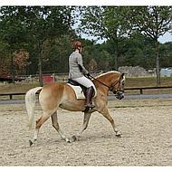 Imperial Riding Haarstrik Luxe Donkerbruin