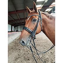 Harrys Horse Dressuurstang Dun Mondstuk