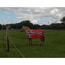 HKM Sweat Rug Flags Flag Norway