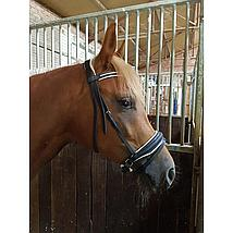 Harrys Horse Hoofdstel Naturals Zwart