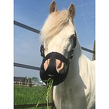 Harrys Horse Grazing Muzzle Air