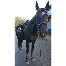 Harry Horse Beenbeschermers Flextrainer Air Bruin