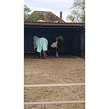 Horseware Fly Rug Liner Wit