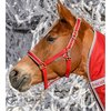 Bucas Head Collar Dublin Red/silver