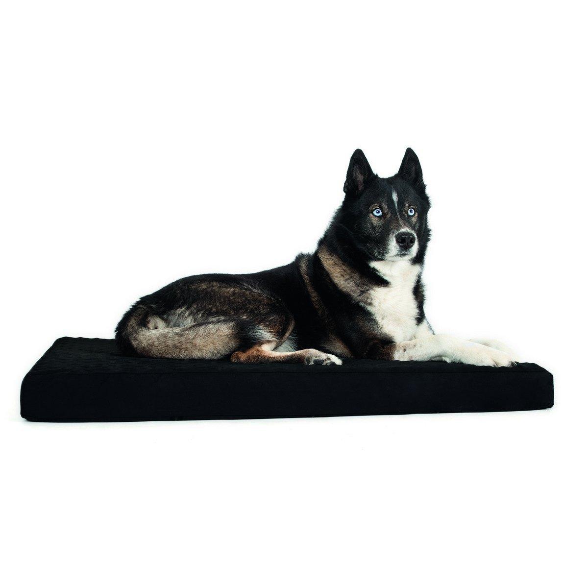 Imagem de Back on Track Dog Mattress Black 50x60cm