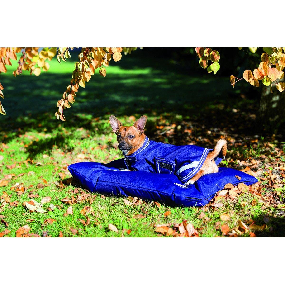 Imagem de Amigo by Horseware Dog Bed 600g AtlanticBlue Large