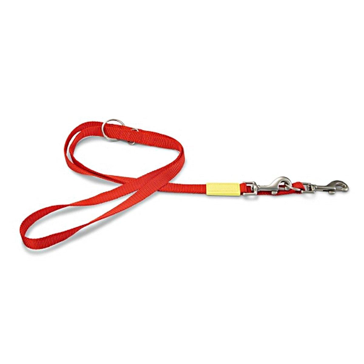 Imagem de Beeztees Dressage Line Uni Nylon Red 200cmx20mm