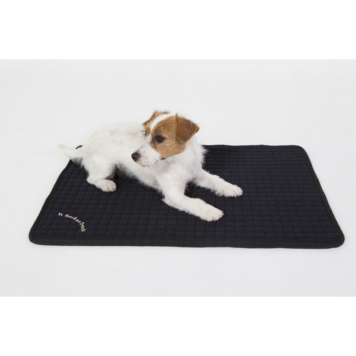Imagem de Back on Track Dog Mattress Allround Black 100x68cm