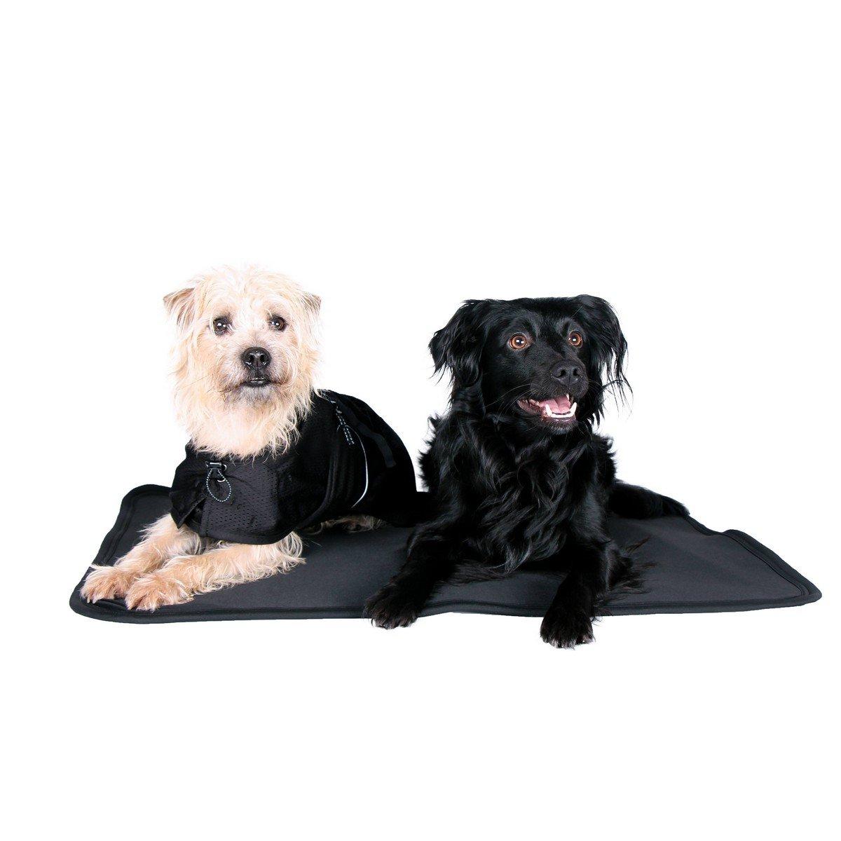 Imagem de Back on Track Dog MattressCage Fit Black 120x74cm