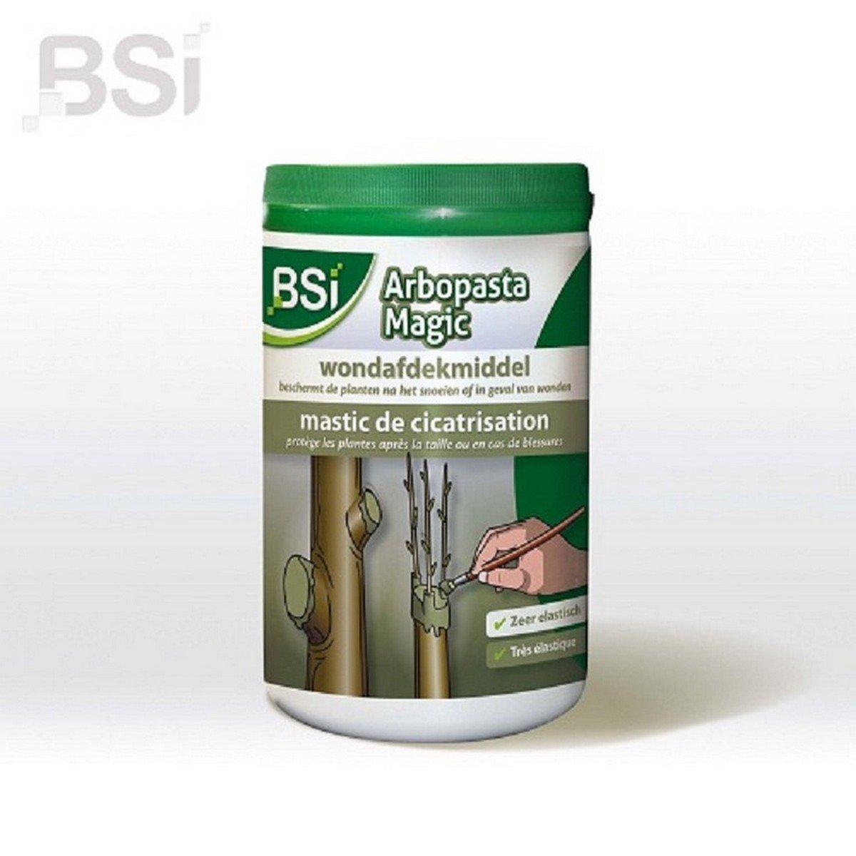 Afbeelding van BSI Afdekpasta Arbopasta Magic voor Boomwonden 1 kg