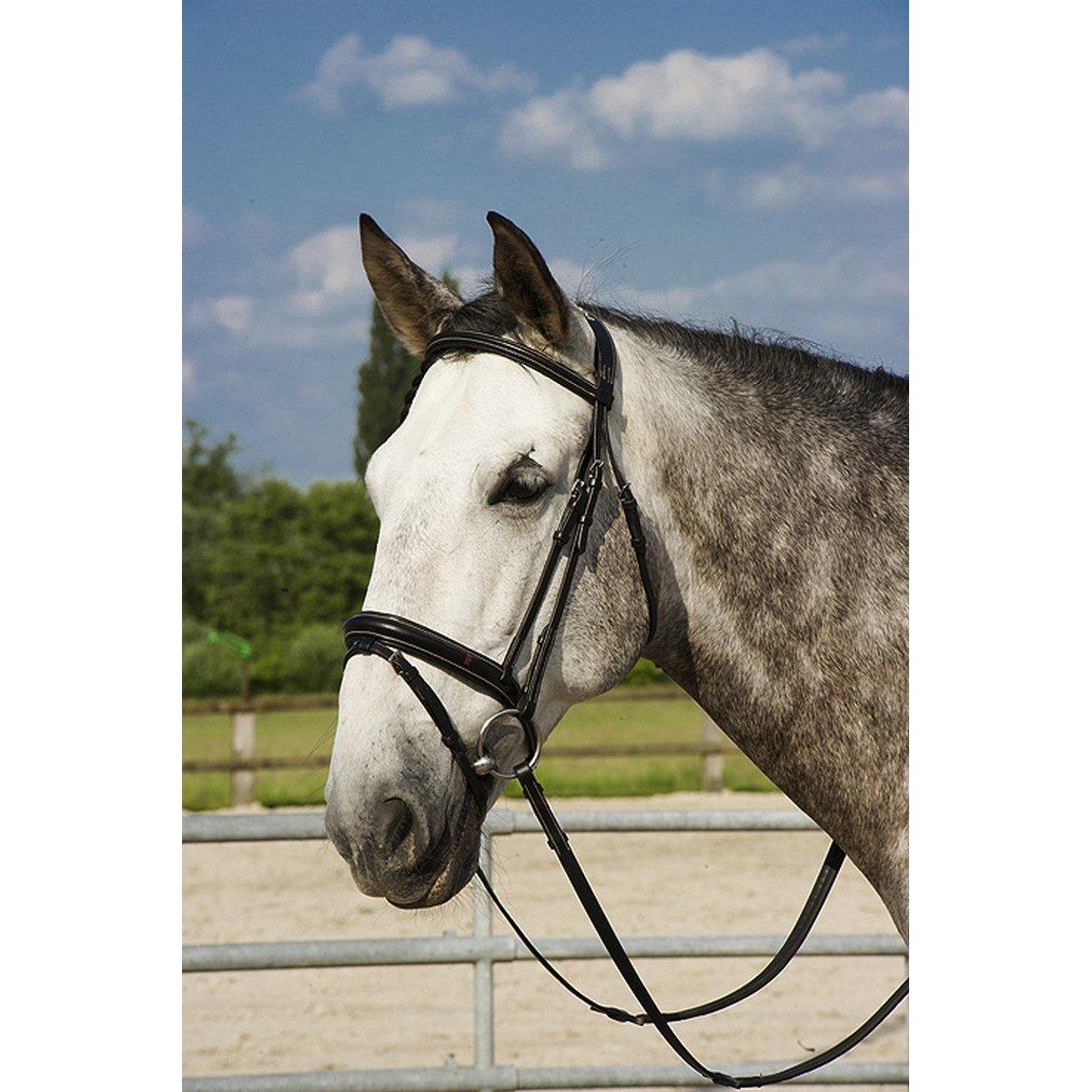 Afbeelding van After Riding Hoofdstel Polo Zwart/Beige Full